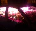 Blomsterfyllda bilar. Ganska underlig idé tyckte vi.