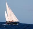 Eira för fulla segel