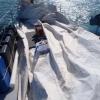 Segelreparation pågår