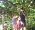 Madeleine och Albin plockar limefrukter