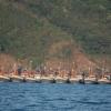Fiskebåtsfest