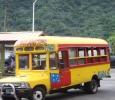 En av alla färgglada bussar